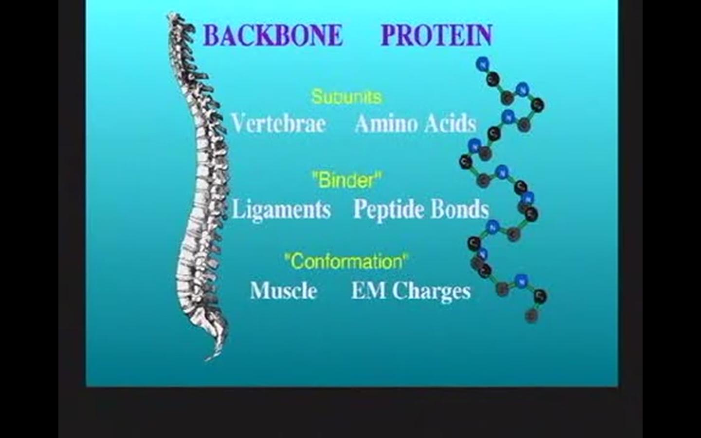 Motivational Biology With Dr Bruce Lipton Cancer Quack